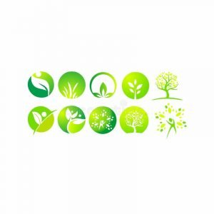 leaf-organic-wellness-people-plant-ecology-nature-design-green-beauty-spa-30n30 club clubhouse